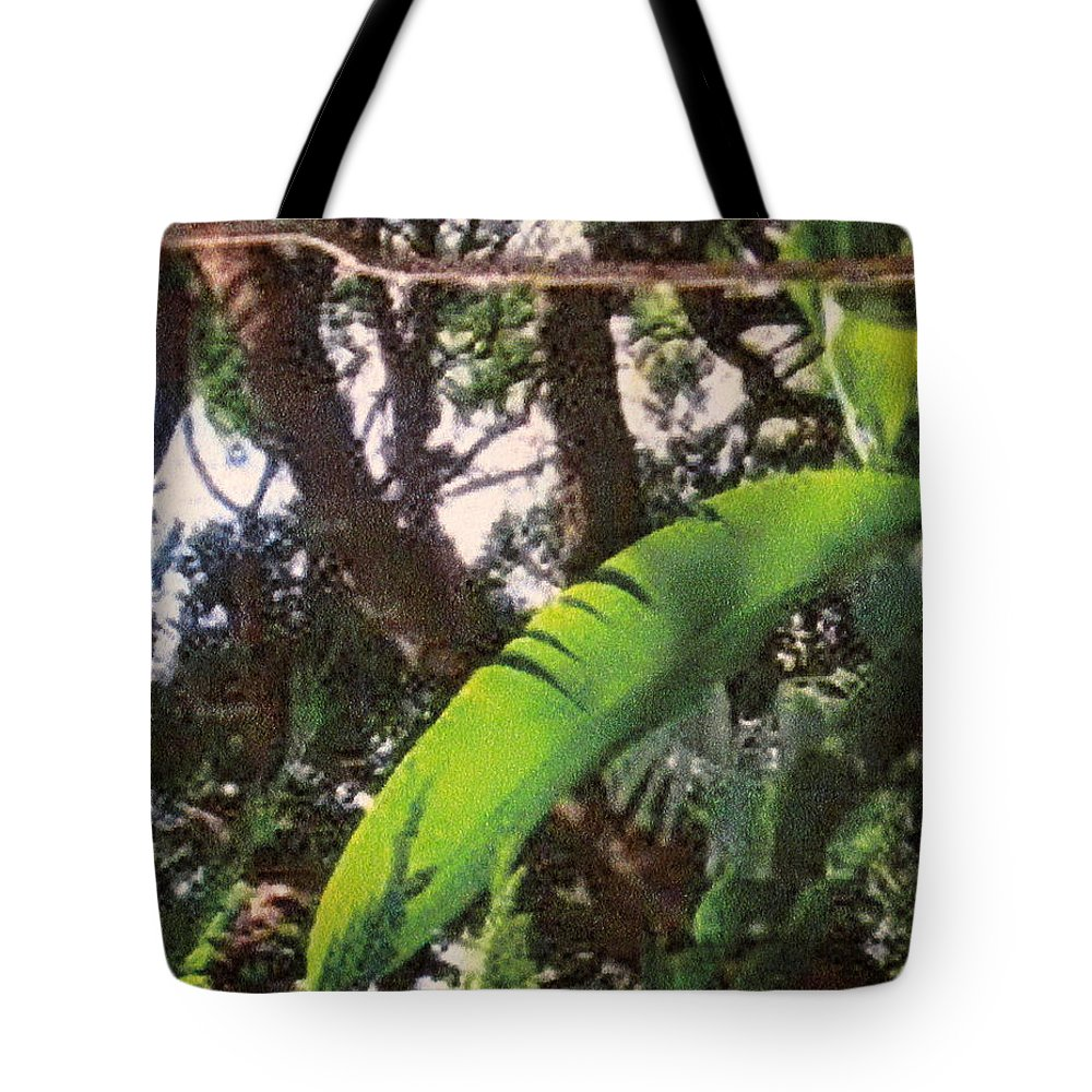 Caribbean Tote Bag featuring the photograph Caribbean Banana Leaf by Ian MacDonald