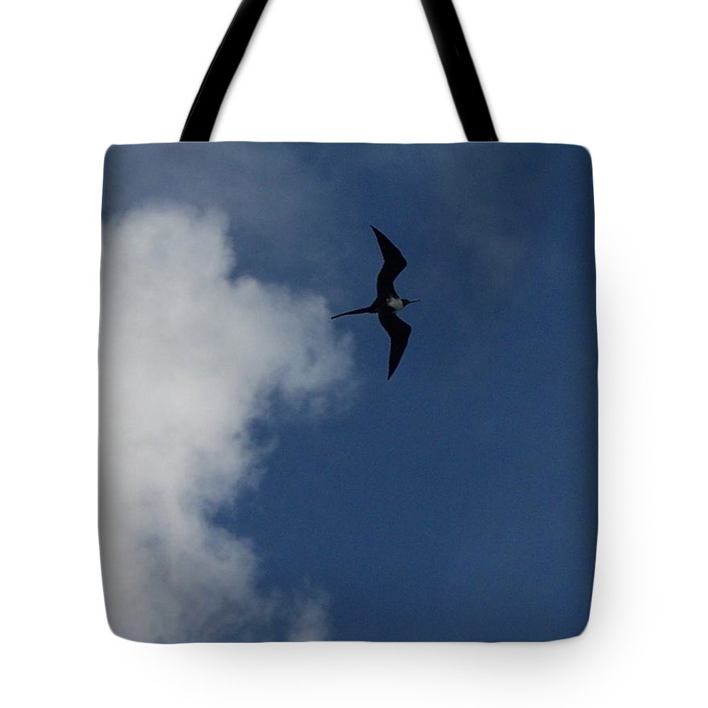 Bird Tote Bag featuring the photograph Caribbean Sky by Michelle Miron-Rebbe