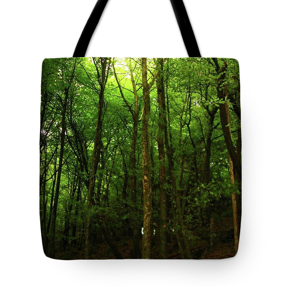 Landscape Tote Bag featuring the photograph Carins Hill Co Sligo Ireland by Louise Macarthur Art and Photography