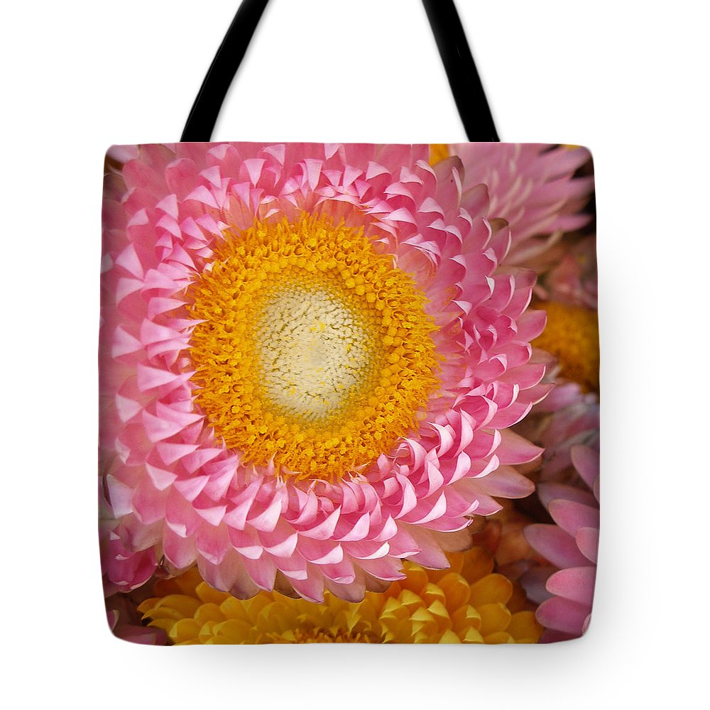 Flower Tote Bag featuring the photograph Carmel Flower by Sarah Madsen