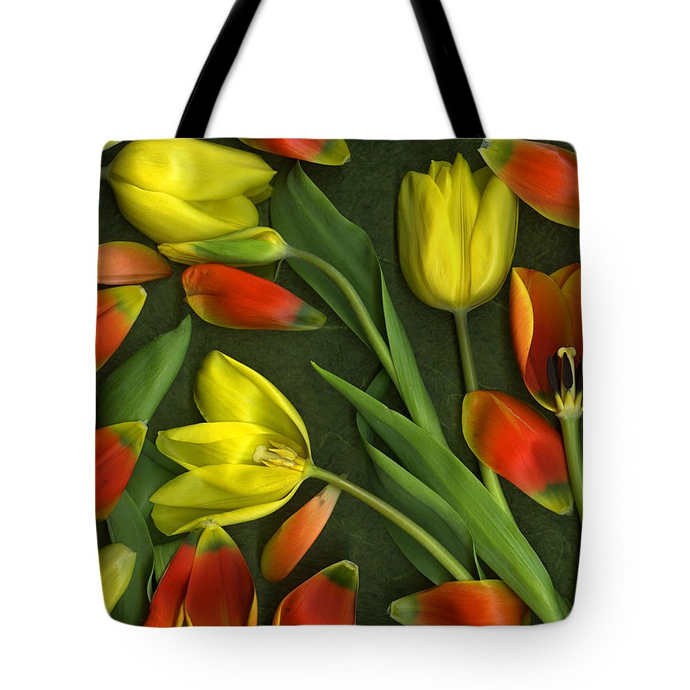Red Tote Bag featuring the photograph Carnival by Christian Slanec
