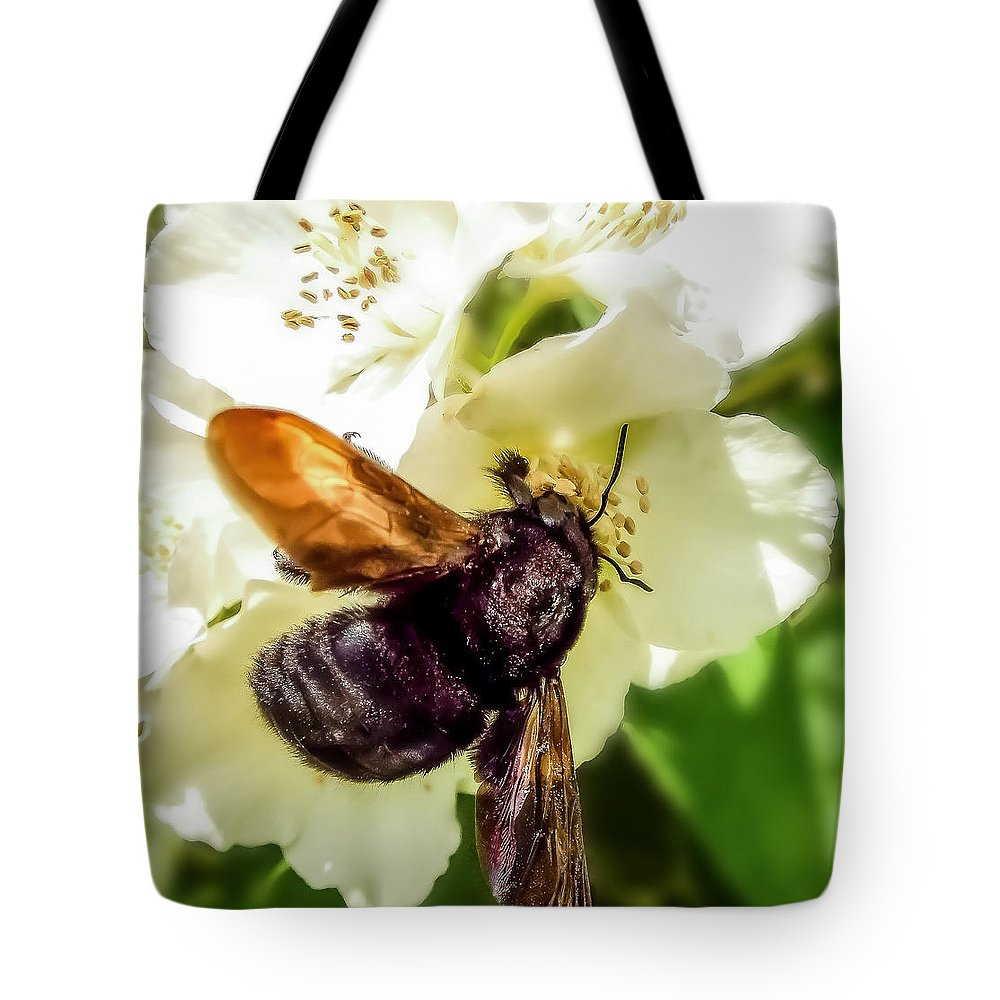 Carpenter Bee Tote Bag featuring the photograph Carpenter Bee by KaFra Art