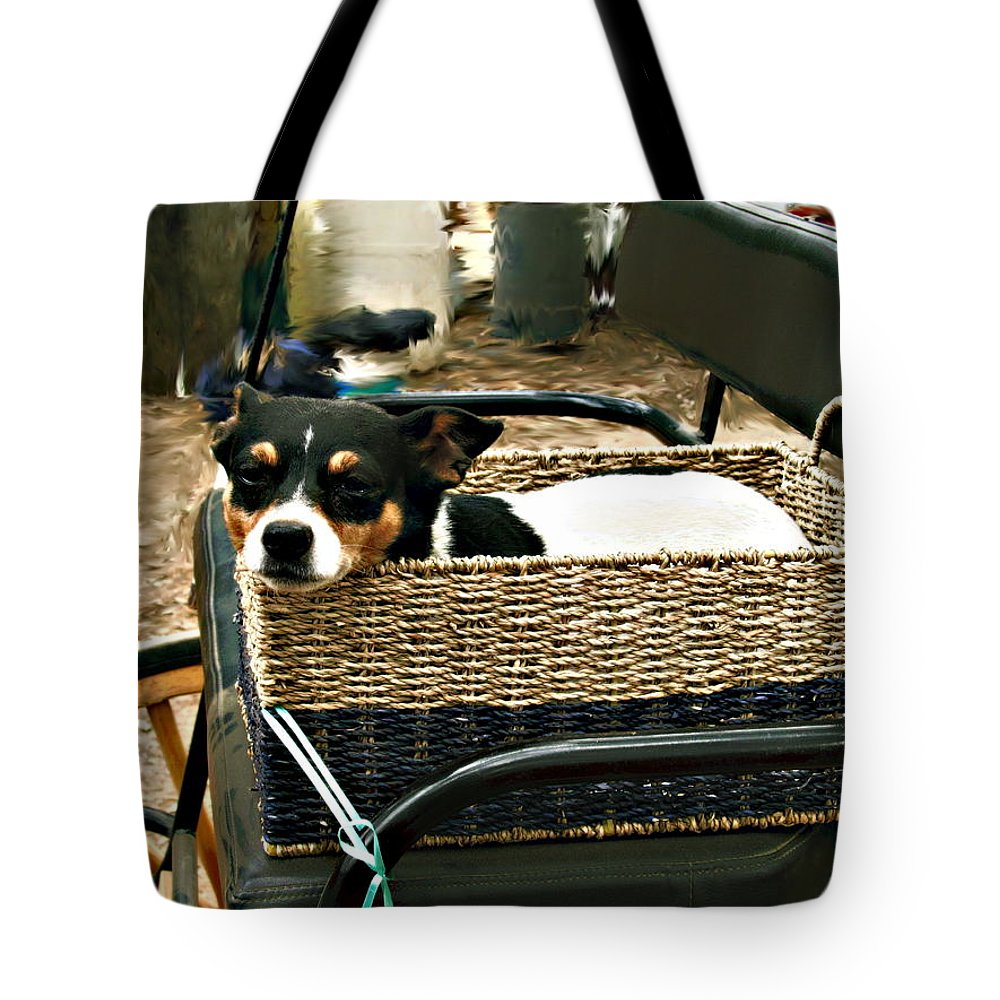Dog Tote Bag featuring the photograph Carriage Dog by Amie Ebert