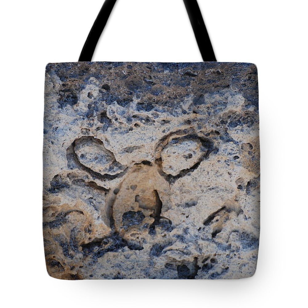 Ocean Tote Bag featuring the photograph Carved Catface by Rob Hans