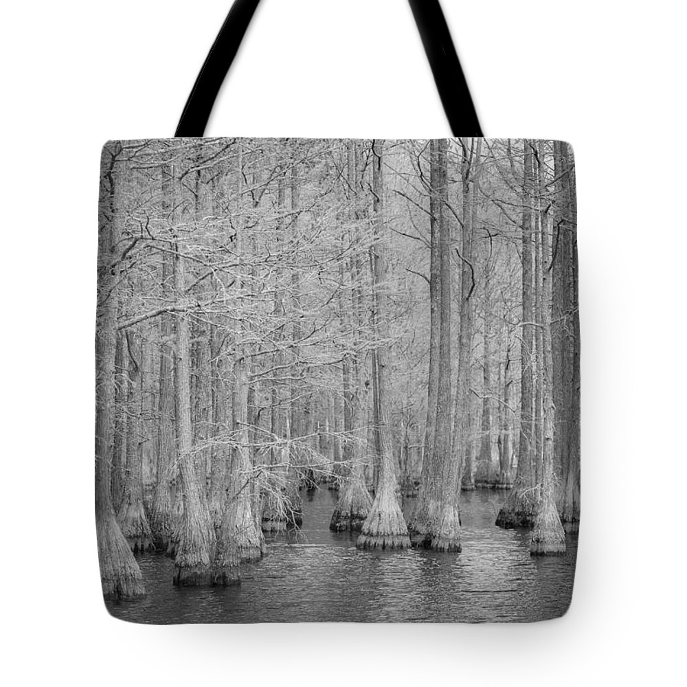 Ir Tote Bag featuring the photograph Carvers Cypress Ir by Tony Noto