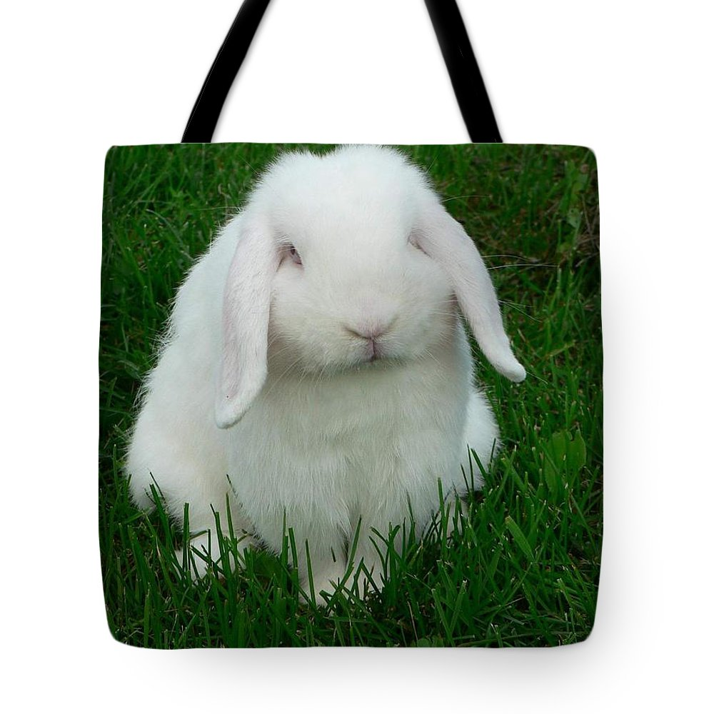 Rabbit Tote Bag featuring the photograph Casper by Melissa Haney