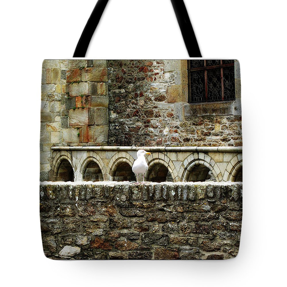 Arch Tote Bag featuring the photograph Castle Bird by Joan Minchak
