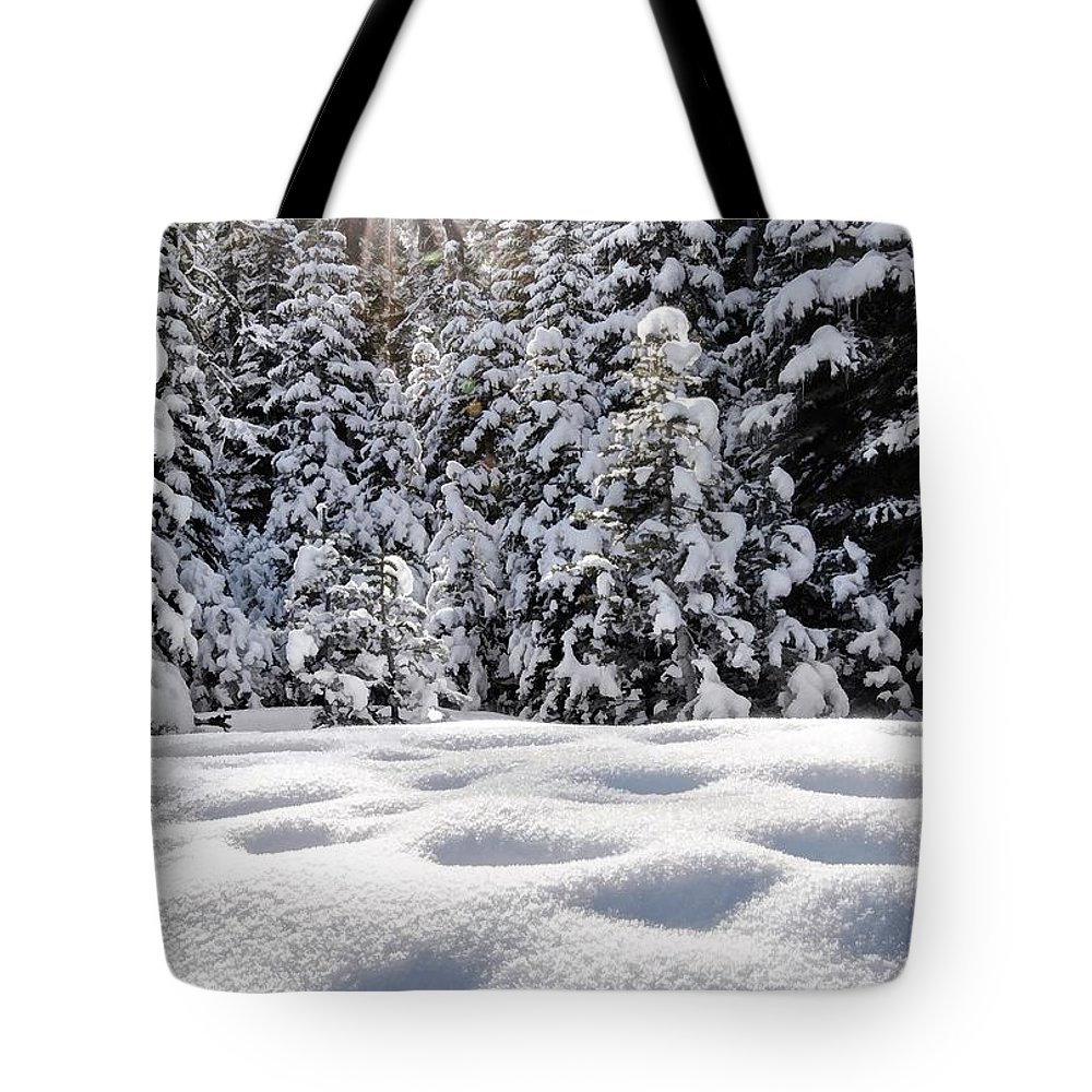 Sierra Nevadas Tote Bag featuring the photograph Castle Peak Winterland by Mark Chandler