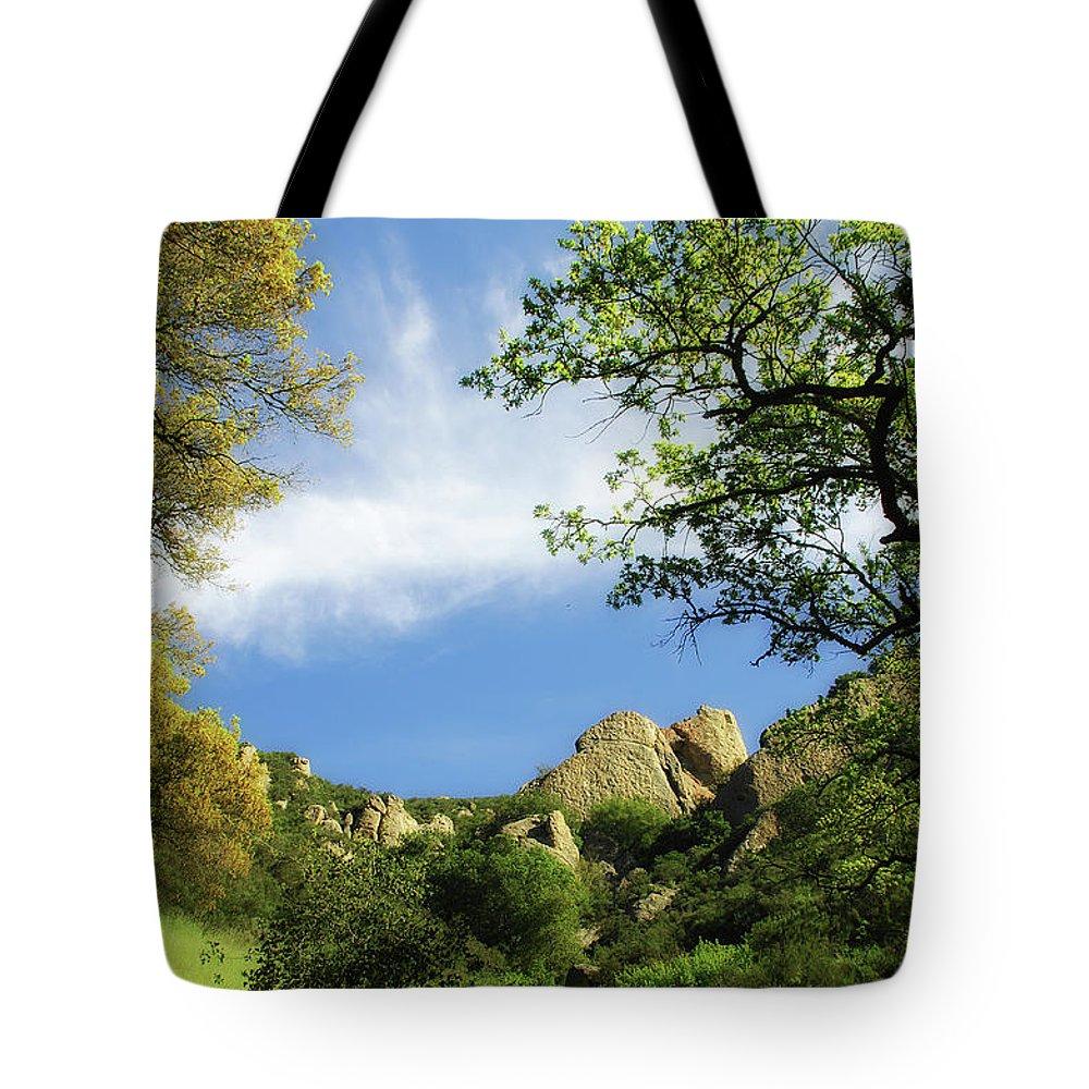 Castle Rock Park Tote Bag featuring the photograph Castle Rock by Donna Blackhall