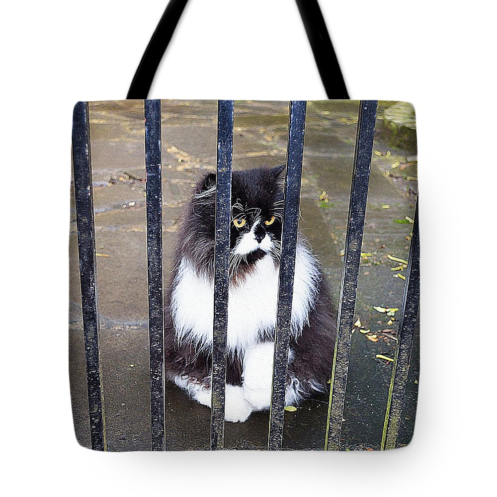 Cat Art Tote Bag featuring the painting Cat At The Gate by Queso Espinosa