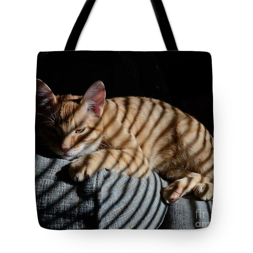 Animal Tote Bag featuring the photograph Cat Camouflage by Robert Buderman