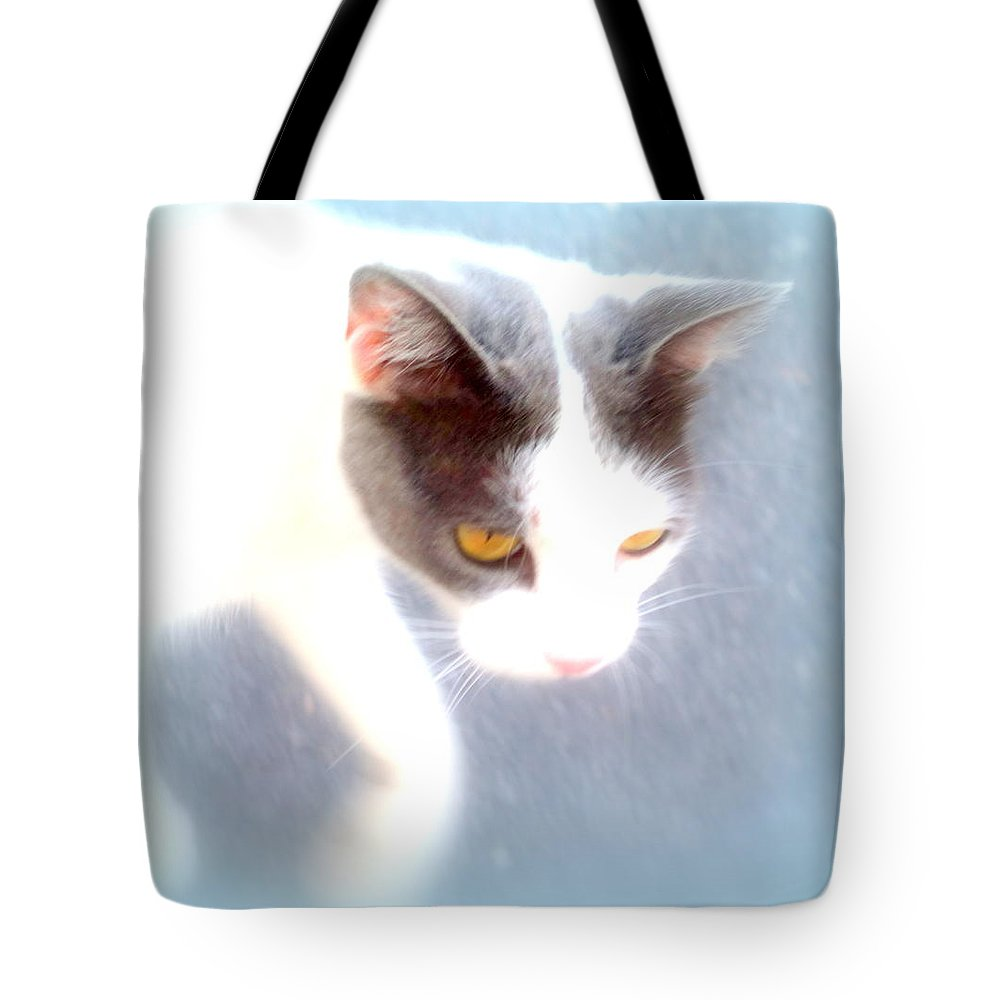 Horse Tote Bag featuring the photograph When You Are A Cat You Have A Different Perspective  by Hilde Widerberg