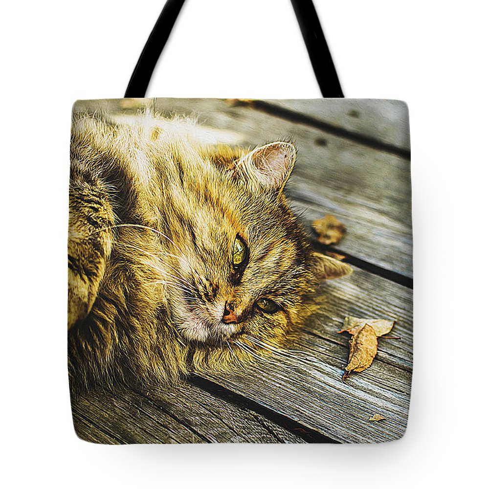 Cat Art Tote Bag featuring the painting Cat Lie Wood Floor by Queso Espinosa