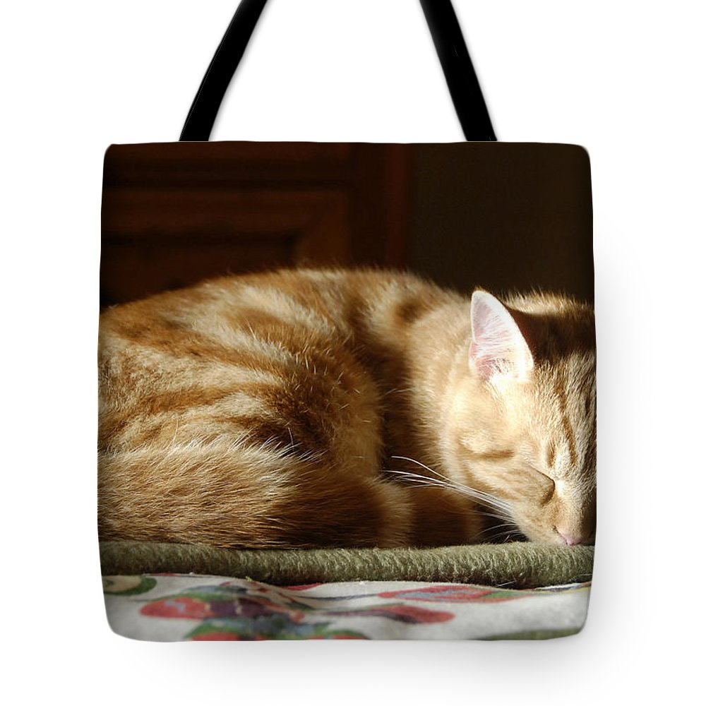 Cat Tote Bag featuring the photograph Cat Nap by David Lee Thompson