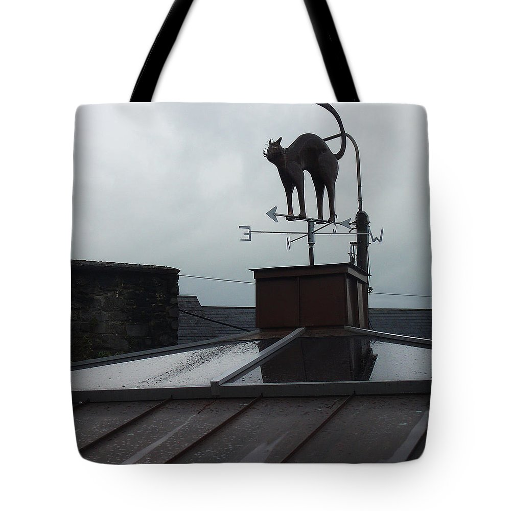 Cat Tote Bag featuring the photograph Cat On A Cool Tin Roof by Tim Nyberg