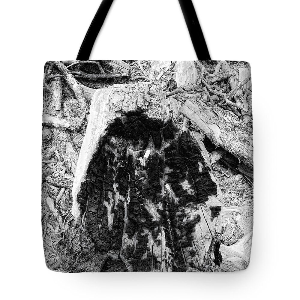 Woo Tote Bag featuring the photograph Catastrophe by Donna Blackhall