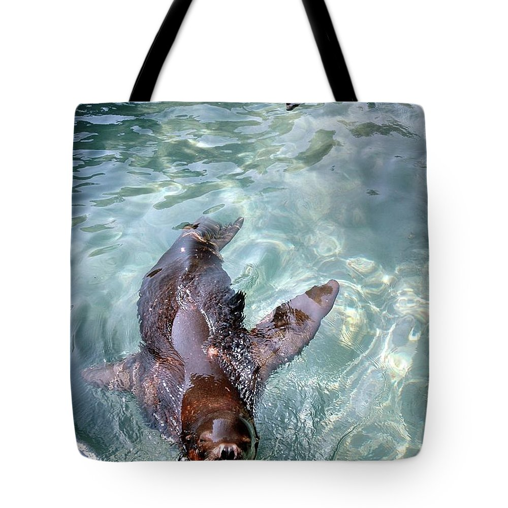 Sea Tote Bag featuring the photograph Catch Me by Kathleen Struckle
