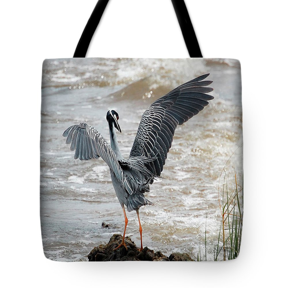 Birds Tote Bag featuring the digital art Catching The River Breeze by DigiArt Diaries by Vicky B Fuller