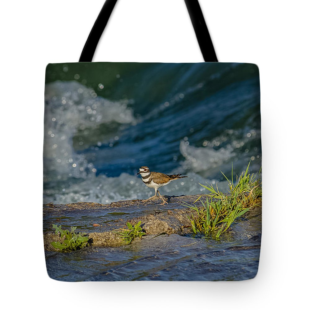 Killdeer Tote Bag featuring the photograph Catching The Wave by Yeates Photography