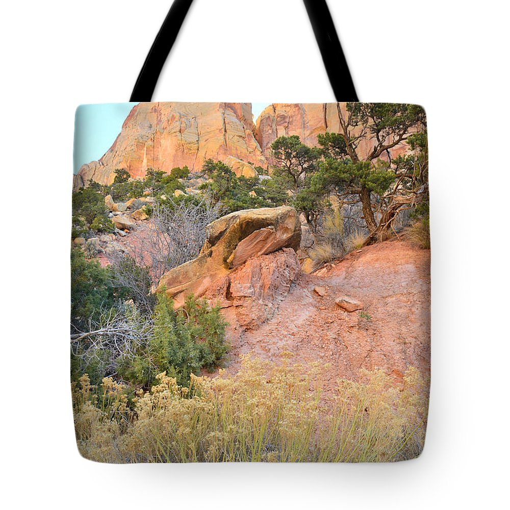 Grand Staircase Escalante National Monument Tote Bag featuring the photograph Cathedral by Ray Mathis