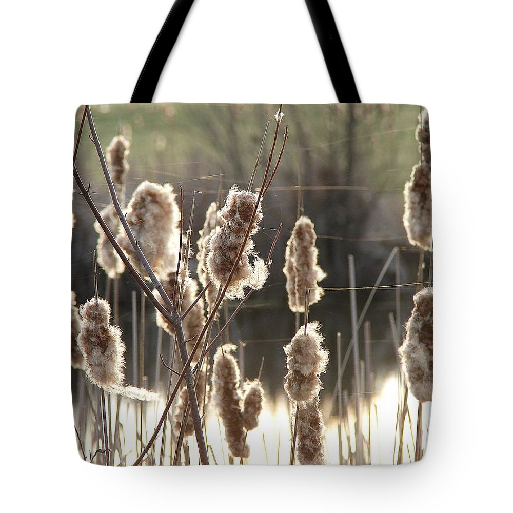 Tote Bag featuring the photograph Cattails by Luciana Seymour