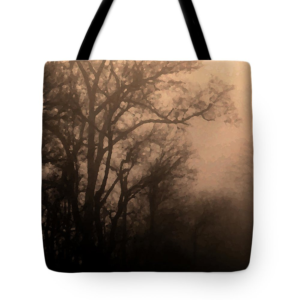 Soft Tote Bag featuring the photograph Caught Between Light And Dark by Amanda Barcon