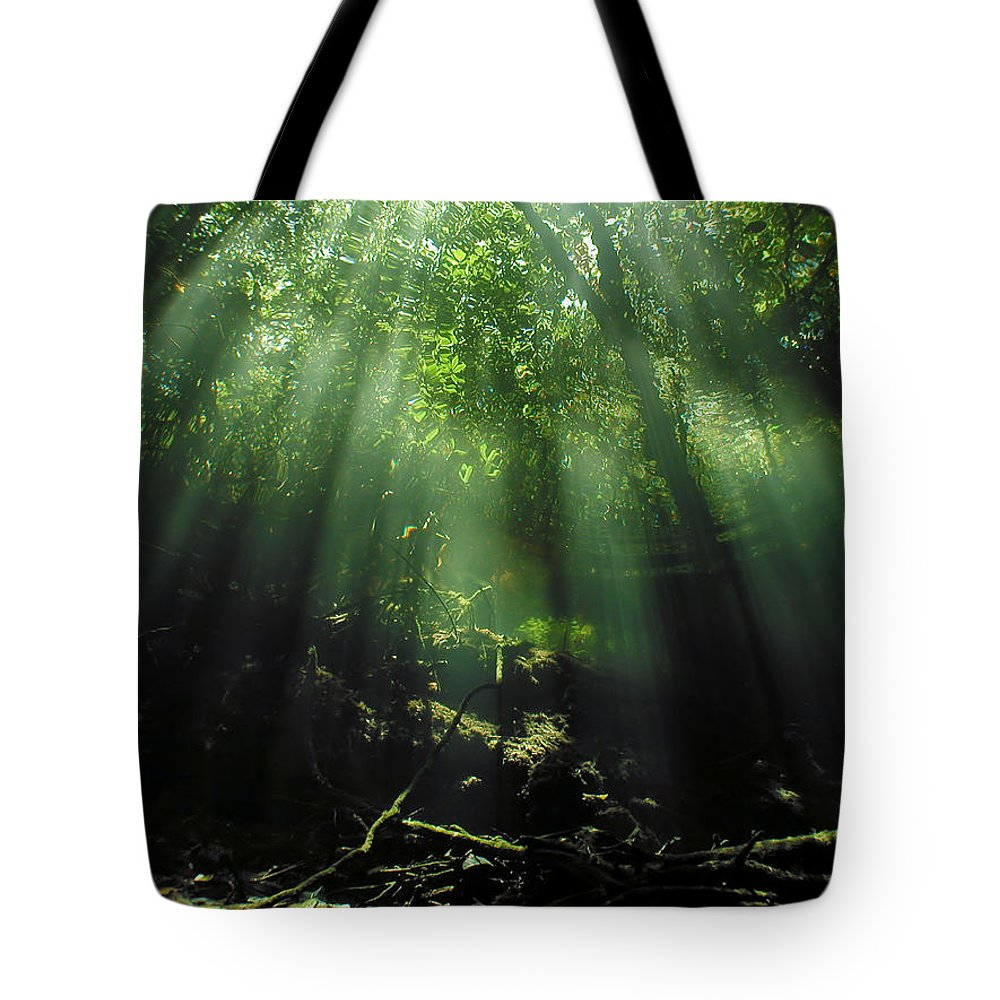 Scuba Tote Bag featuring the photograph Cave Diving In Mexico by Christine Till