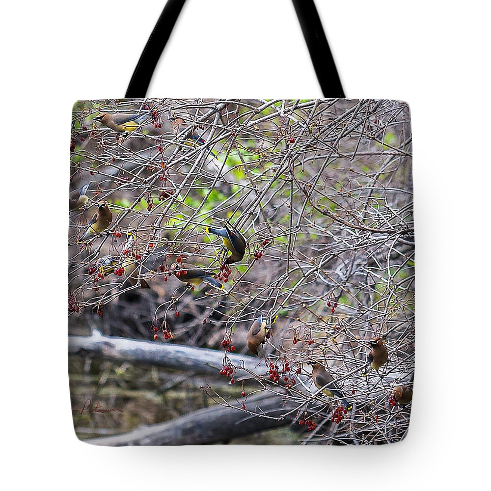 Heron Heaven Tote Bag featuring the photograph Cedar Waxwings Feeding by Edward Peterson