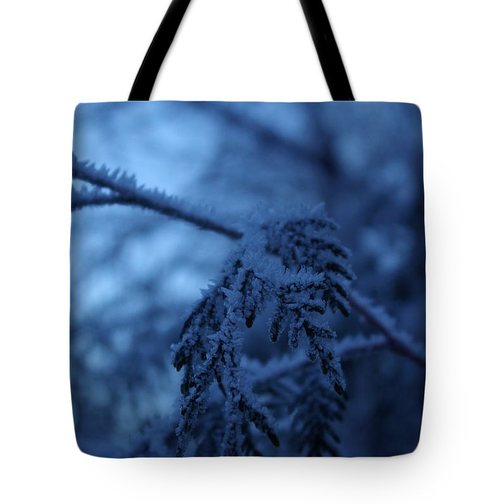 Cedar Tote Bag featuring the photograph Cedars Of Ice II by Cindy Johnston
