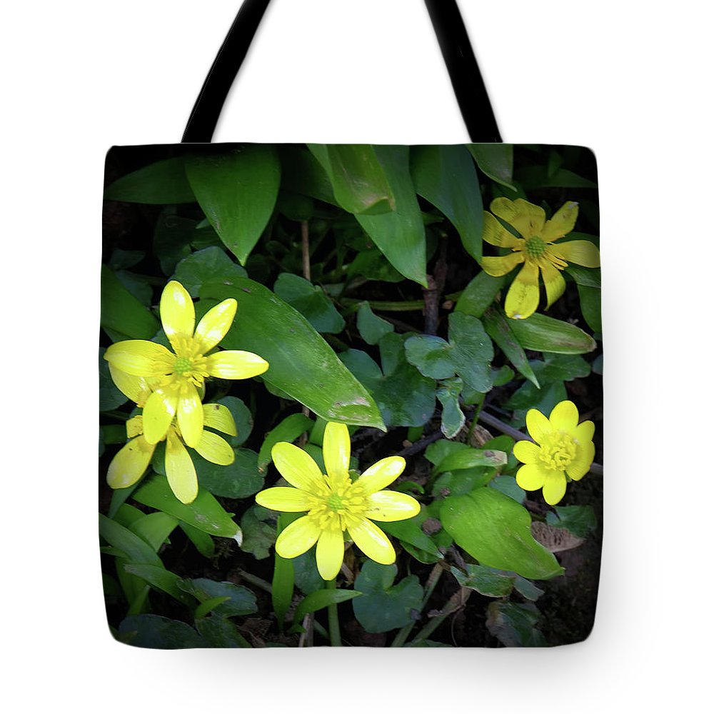 Celandine Tote Bag featuring the photograph Celandine Flowers by Jeff Townsend