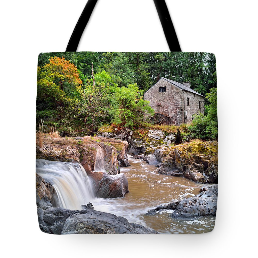 Cenarth Tote Bag featuring the photograph Cenarth 1 by Phil Fitzsimmons