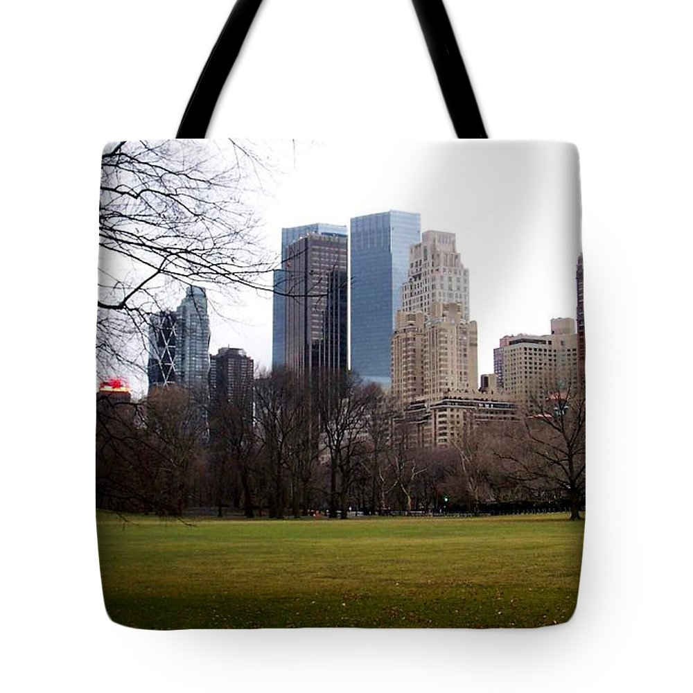 Central Park Tote Bag featuring the photograph Central Park by Anita Burgermeister