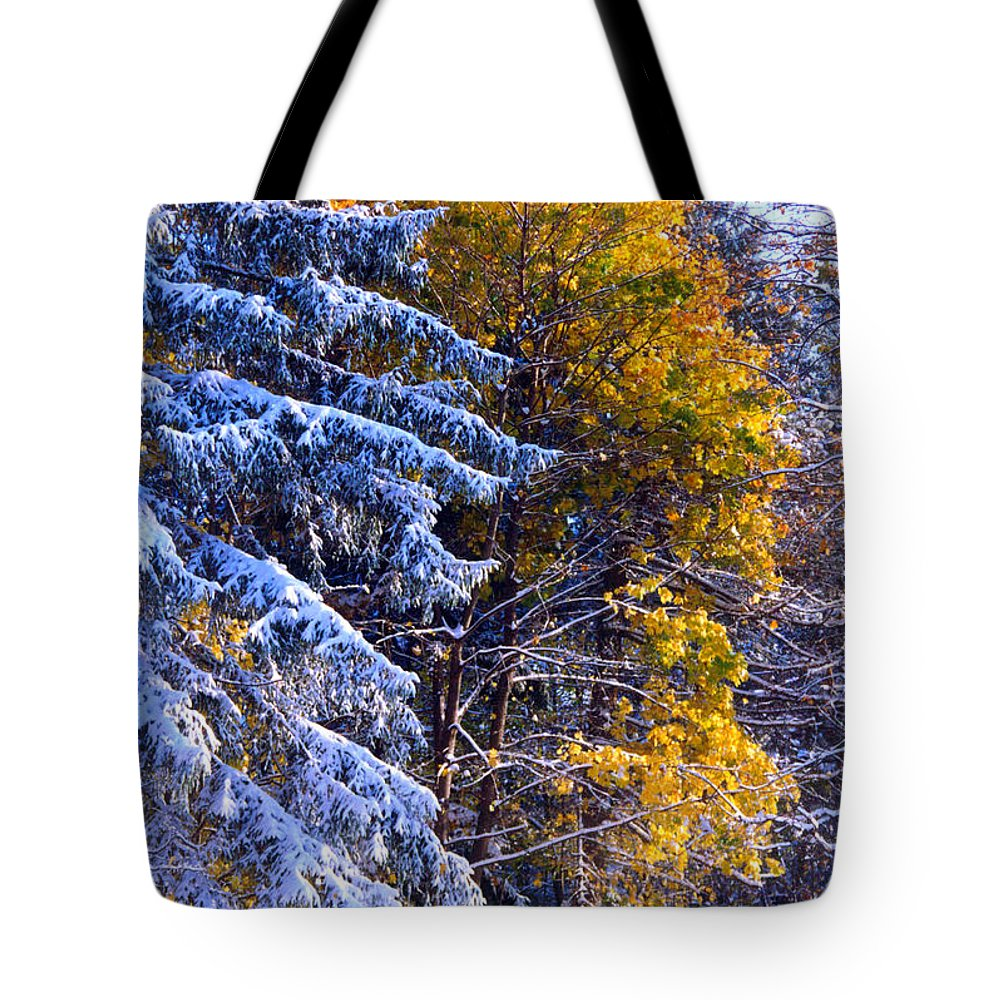 Tree Tote Bag featuring the photograph Change Of Seasons by Rusty Ruckel