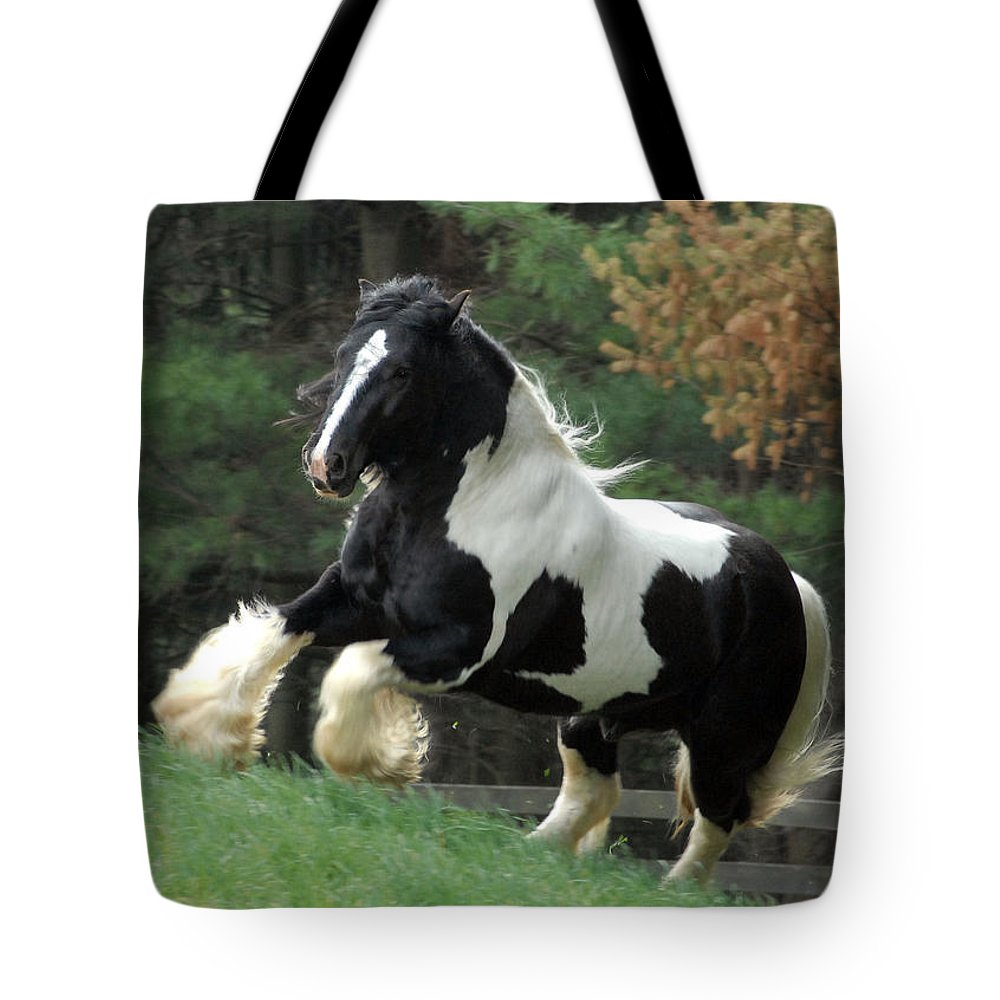 Gypsy Horses Tote Bag featuring the photograph Charge by Fran J Scott