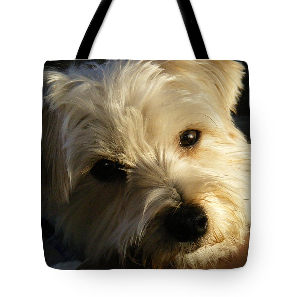 Dog Tote Bag featuring the photograph Charlie by Ed Smith