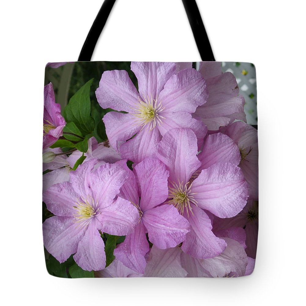 Clematis Tote Bag featuring the photograph Charming Clematis by Barbara Ebeling