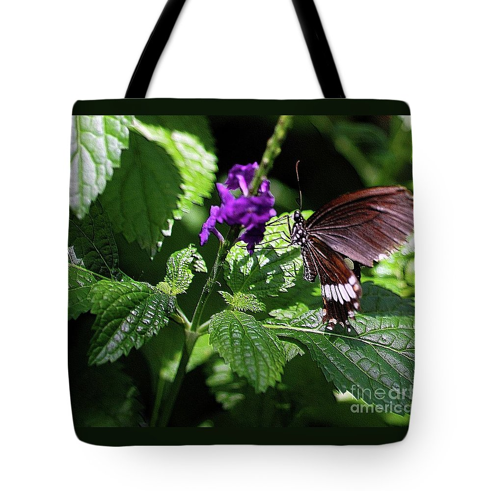Tan Tote Bag featuring the photograph Charming by Kathleen Struckle