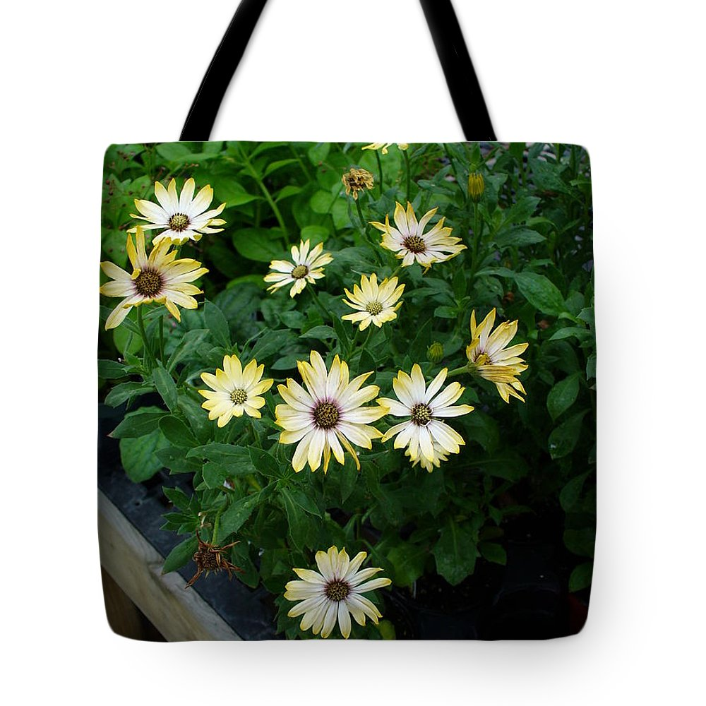 Flowers Tote Bag featuring the photograph Chatter by Peggy King