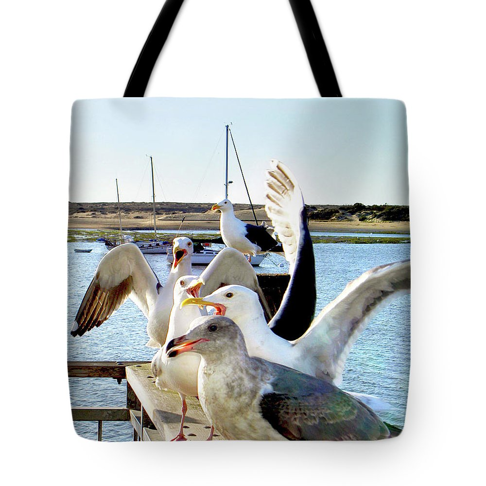 Sea Birds Tote Bag featuring the photograph Chatty Seagull Birds by Haleh Mahbod