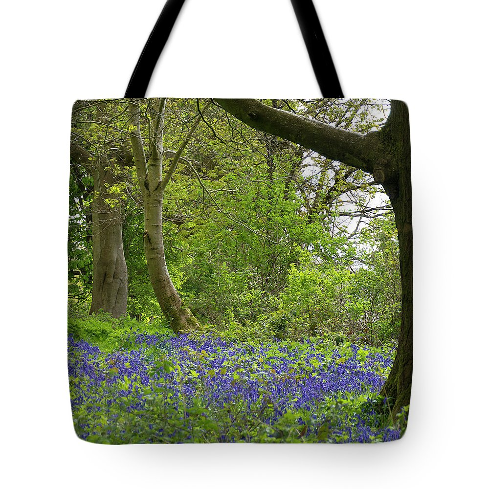 Chawton Tote Bag featuring the photograph Chawton House Library,hampshire by Philip Enticknap