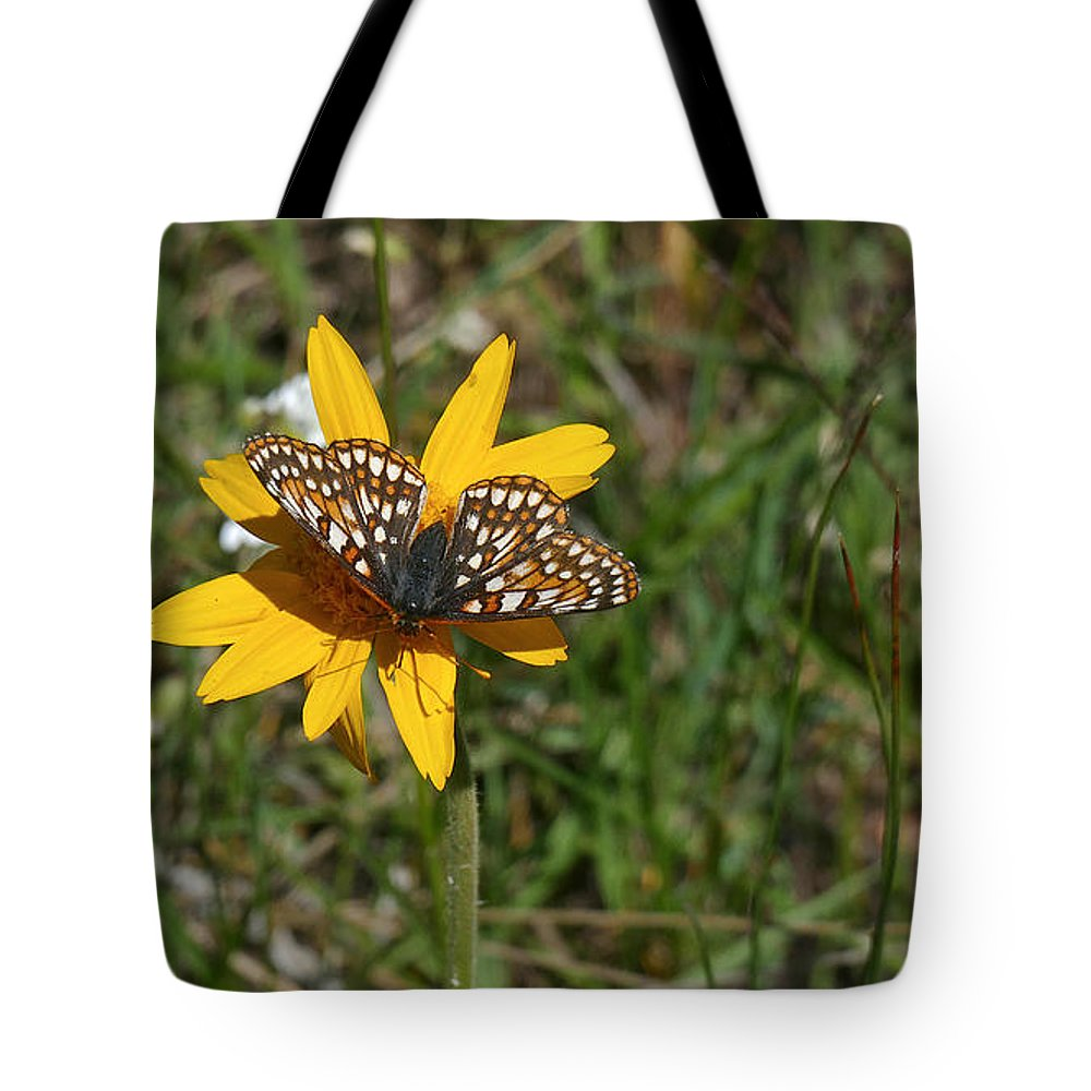 Ron Glaser Tote Bag featuring the photograph Checkerspot On Bahai Aster 1 by Ron Glaser