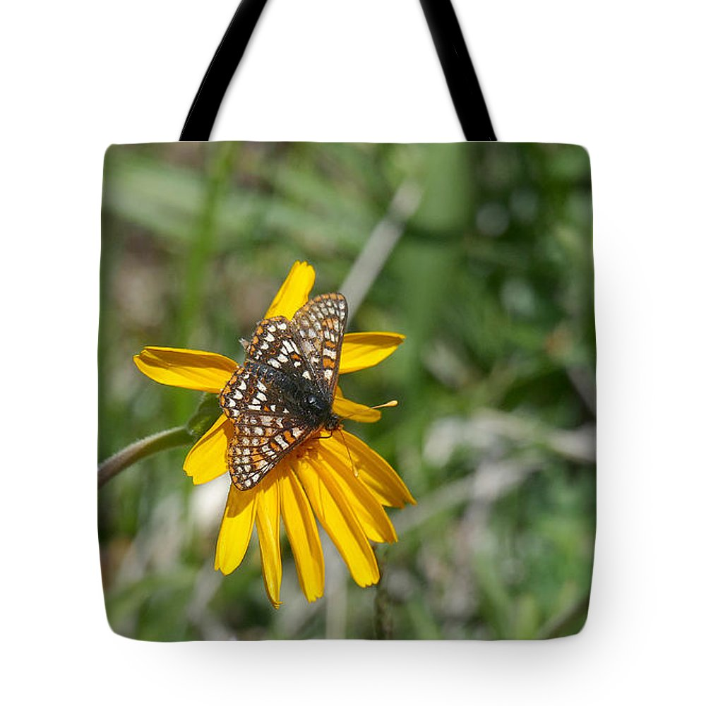 Ron Glaser Tote Bag featuring the photograph Checkerspot On Bahai Aster 3 by Ron Glaser