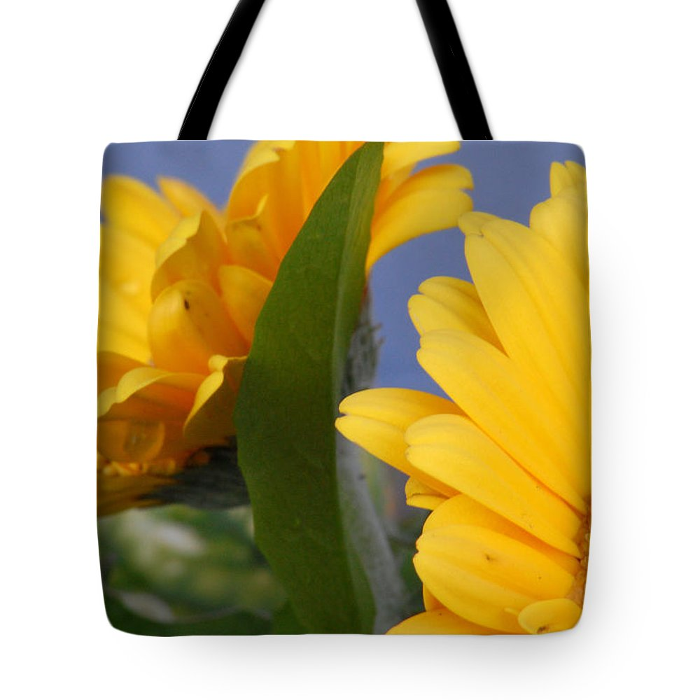 Gerbera Daisy Tote Bag featuring the photograph Cheerful Gerbera Daisies by Amy Fose
