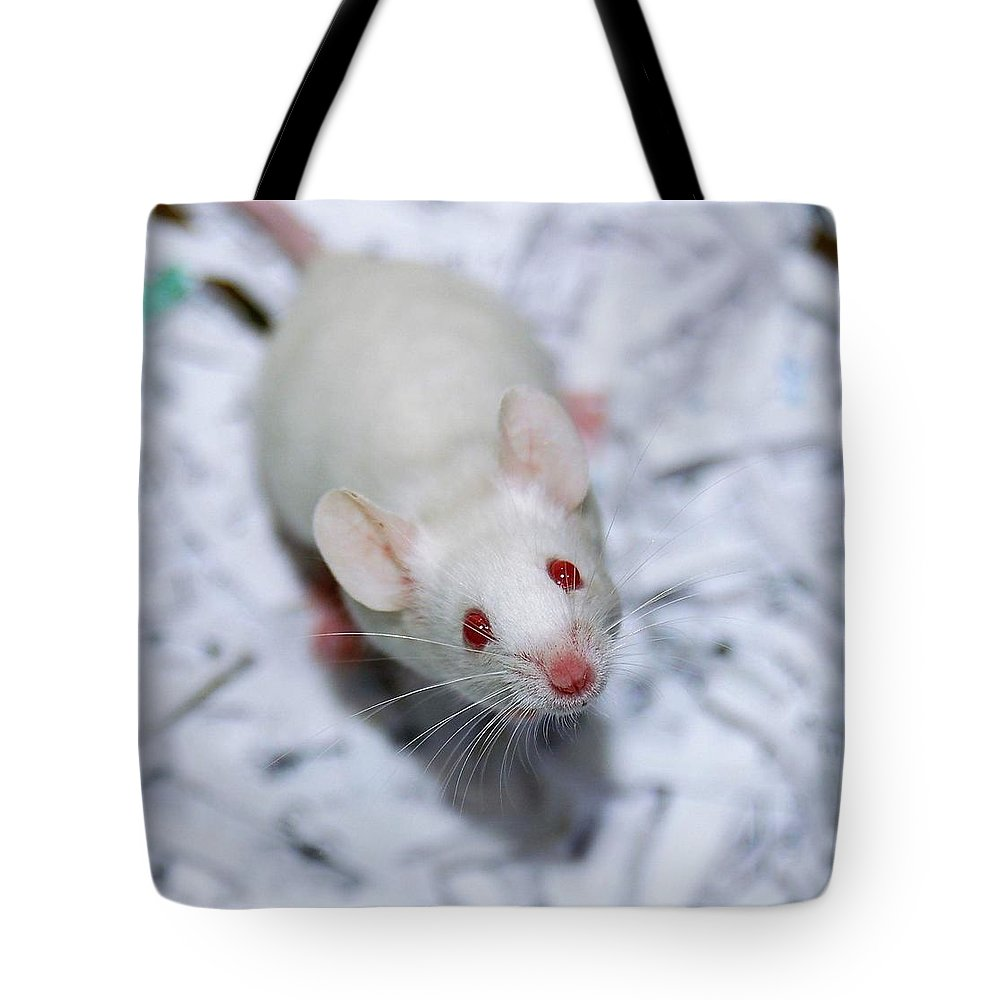 Mouse Tote Bag featuring the photograph Cheese Please by Melissa Haney