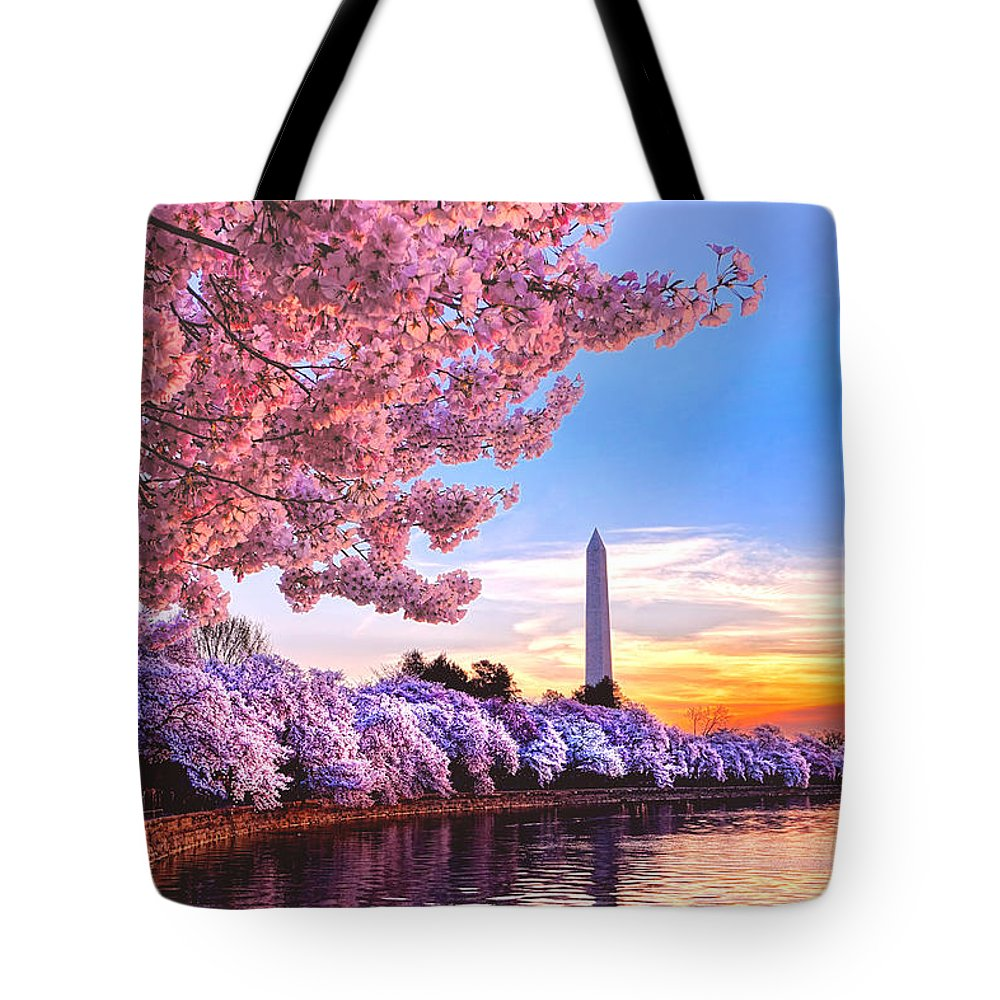 Cherry Blossom Festival Lifestyle Products