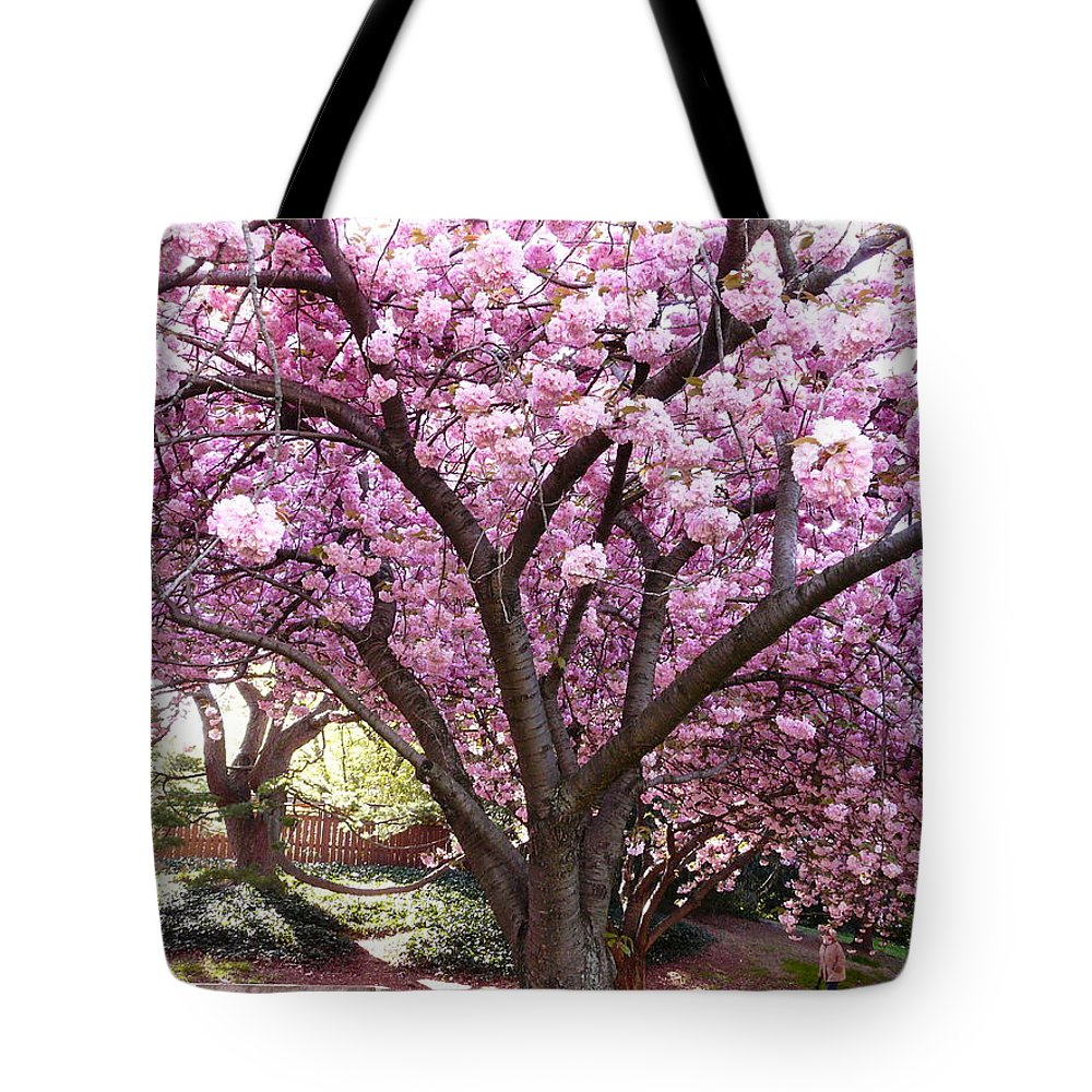 Cherry Blossom Tote Bag featuring the photograph Cherry Blossom Wonder by Kendall Eutemey