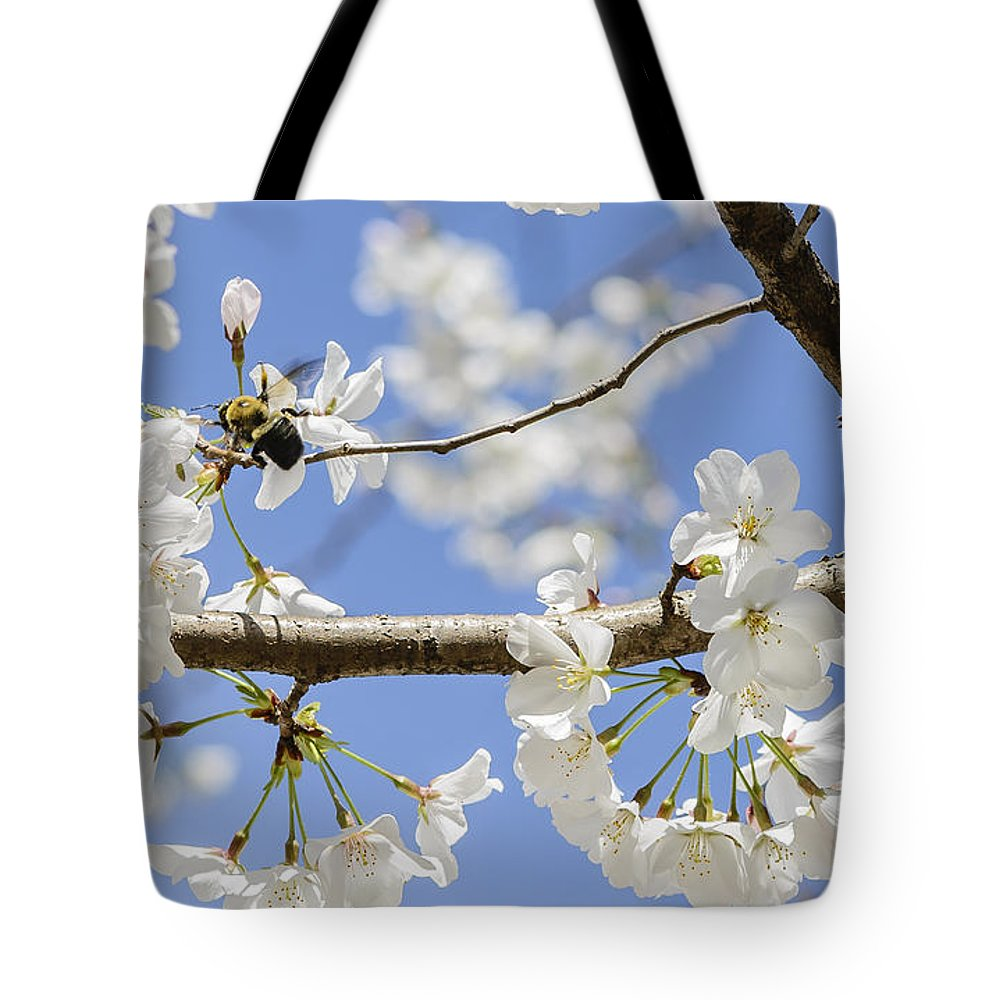 Bumblebee Tote Bag featuring the photograph Cherry Blossoms And Bumblebee by Elvis Vaughn