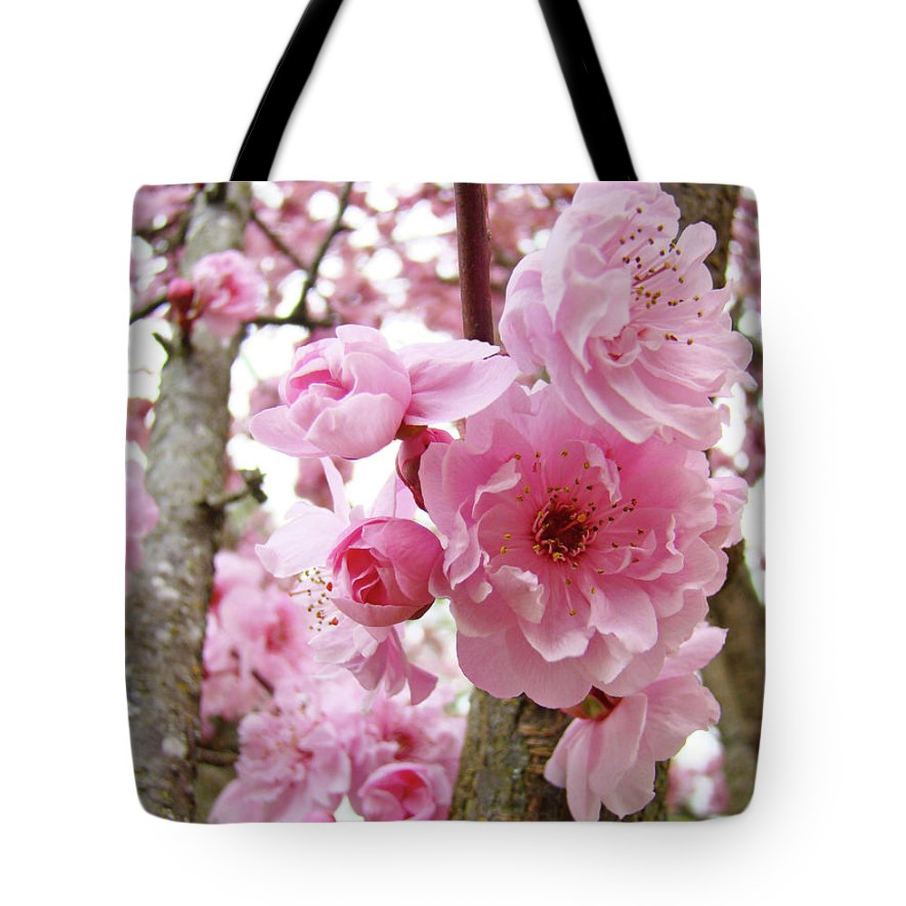 Nature Tote Bag featuring the photograph Cherry Blossoms Art Prints 12 Cherry Tree Blossoms Artwork Nature Art Spring by Baslee Troutman