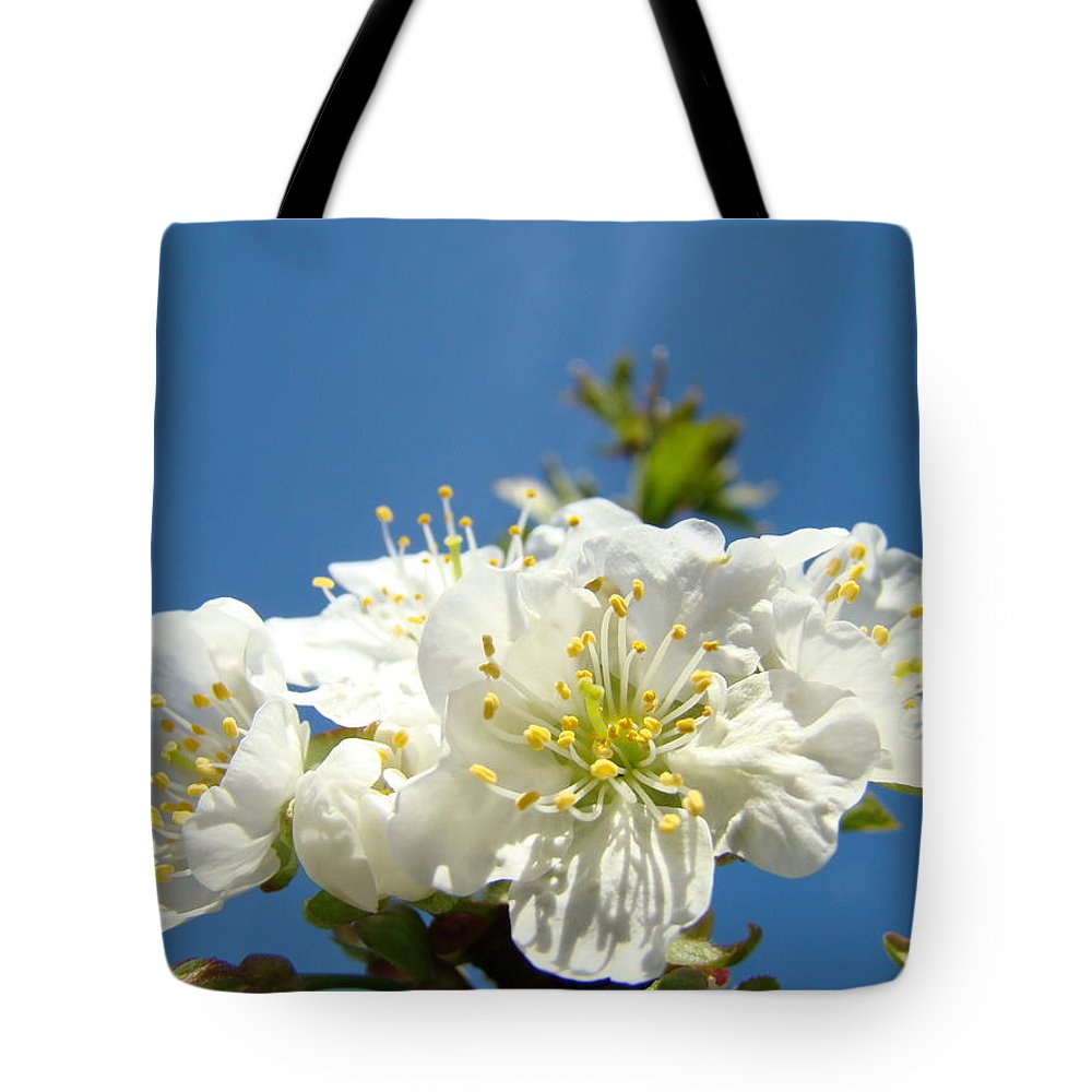Blossom Tote Bag featuring the photograph Cherry Blossoms Art White Spring Tree Blossom Baslee Troutman by Baslee Troutman