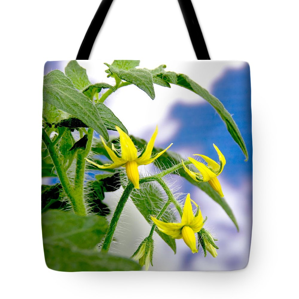 Nature Tote Bag featuring the photograph Cherry Blossoms by Gordon Castle